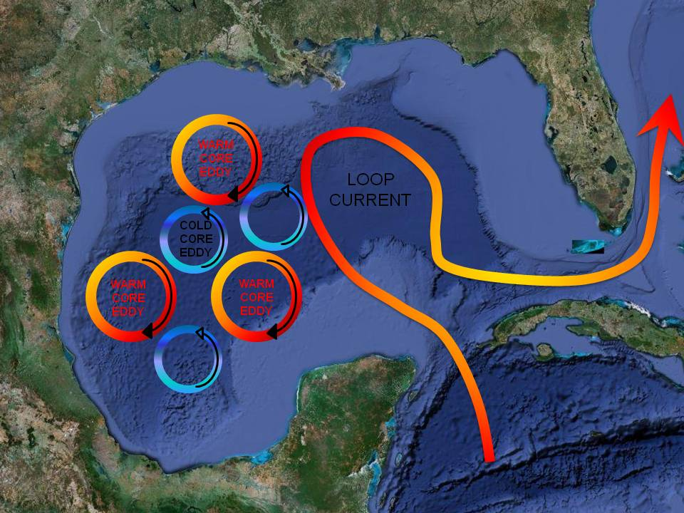 Cosee Ocean Systems  Blogs